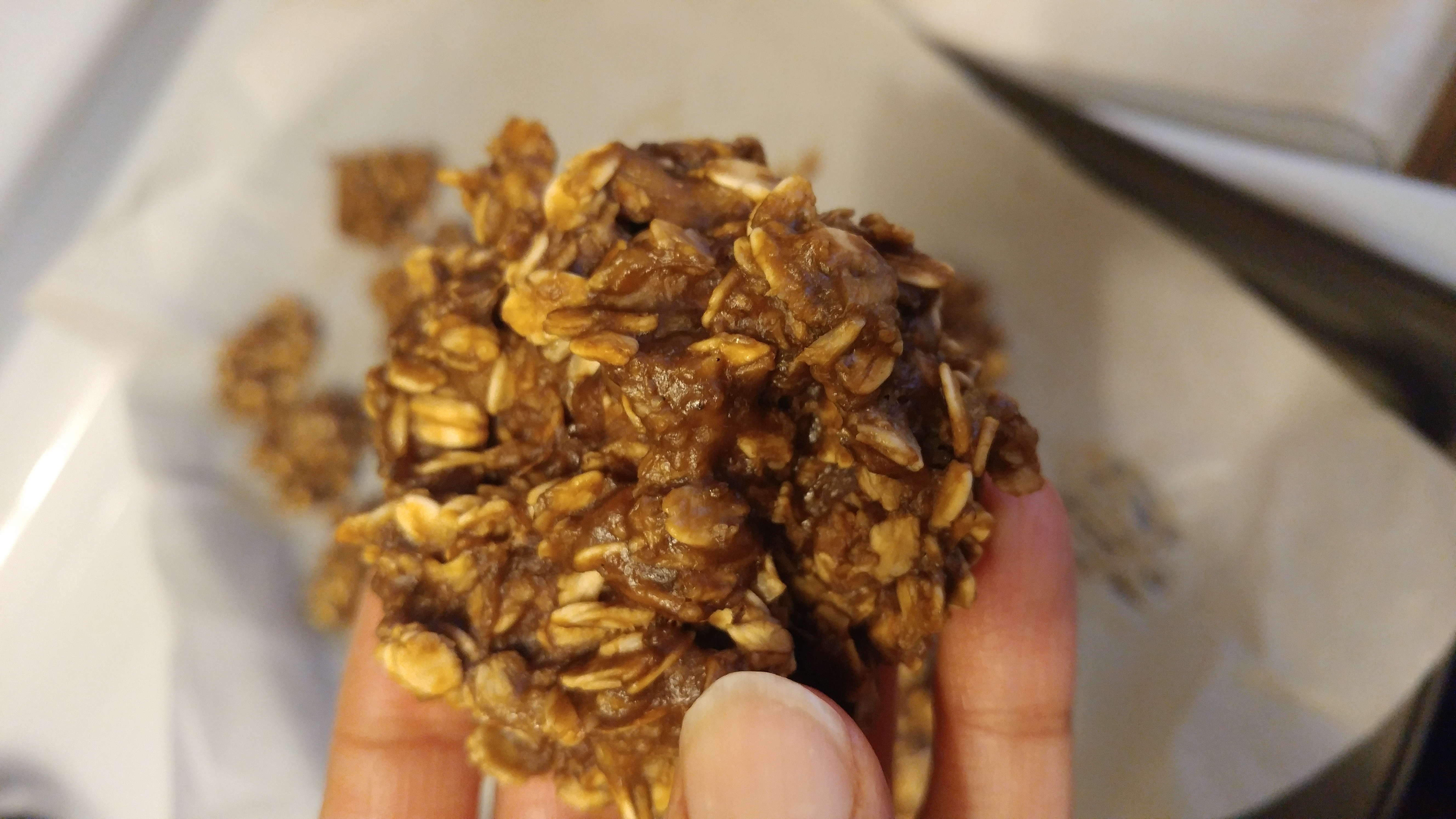 Oat Cookies- Nut Free